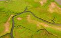Wetlands aerial view of lush coastal Stock Photo