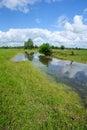WETLANDs landscape Royalty Free Stock Photo