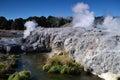 Whakarewarewa valley of geysers in new zelandii geotermalny park abbreviation completely same it sounds like te whakarewarewatanga Stock Image