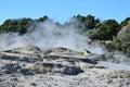 Whakarewarewa valley of geysers in new zelandii geotermalny park abbreviation completely same it sounds like te whakarewarewatanga Stock Photo
