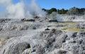 Whakarewarewa valley of geysers new zelandiiya geotermalny rese abbreviation completely same it sounds like te whakarewarewatanga Stock Image