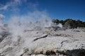 Whakarewarewa valley of geysers new zelandiiya geotermalny rese short name it sounds completely the same as te whakarewarewatanga Stock Image