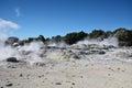 Whakarewarewa valley of geysers new zelandiiya geotermalny rese short name it sounds completely the same as te whakarewarewatanga Stock Photos