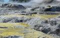 Whakarewarewa valley of geysers new zelandiiya geotermalny rese short name it sounds completely the same as te whakarewarewatanga Royalty Free Stock Photos