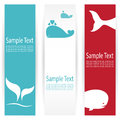Whale banners vector image of an Stock Photography