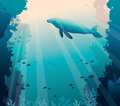 Whale, coral reef and sea. Underwater vector. Royalty Free Stock Photo
