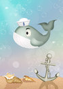 Whale with sailor hat Royalty Free Stock Photo