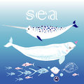 Whales in the sea various animals blue water Stock Photo