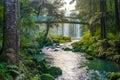 Whangarei Falls Royalty Free Stock Photo