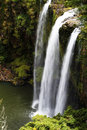 Whangarei Falls, NZ Stock Photography