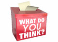 What Do You Think Opinion Share Thoughts Box Royalty Free Stock Photo