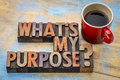 What is my purpose question text in vintage letterpress wood type printing blocks with cup of coffee Royalty Free Stock Photos