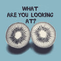 What are you looking at t shirt design with metaphorical kiwi eyes vector illustration Stock Photos