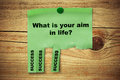 What is your aim in life, success