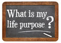 What is your life purpose question on a vintage blackboard isolated on white Stock Photography