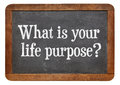 What is your life purpose a question on a vintage slate blackboard Royalty Free Stock Image