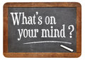What is on your mind question handwritten with white chalk blackboard isolated white Stock Photography