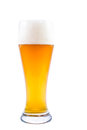 Wheat beer a fresh glass of traditional bavarian weissbier Royalty Free Stock Images