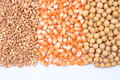 Wheat corn and soybean closeup Stock Photos