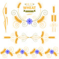 Wheat and cornflower design elements set Stock Photography