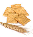 Wheat Crackers and Wheat Head Stock Photography