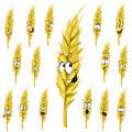 Wheat ear cartoon Royalty Free Stock Photos