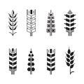 Wheat ear symbols for logo icon set, leaves icons Royalty Free Stock Photo