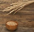 Wheat ears on an old wooden plank Royalty Free Stock Images