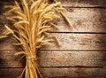 Wheat ears on the wooden table harvest concept Stock Photography