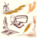 Wheat elements Royalty Free Stock Photography