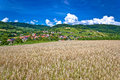 Wheat field and pictoresque mountain village Royalty Free Stock Photo