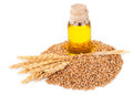 Wheat germ oil Royalty Free Stock Photo