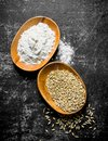 Wheat grain and flour in bowls Royalty Free Stock Photo