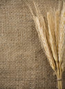 Wheat grain and sack as background Stock Images