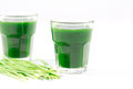 Wheat grass juice on white background with fresh Royalty Free Stock Image