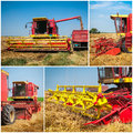Wheat harvest collage Royalty Free Stock Photo
