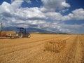 Wheat harvest on Liptov, Slovakia