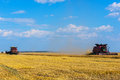 Wheat harvest two combines in a field harvesting crop Stock Images