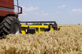Wheat harvesting combine harvester in action at field Royalty Free Stock Images