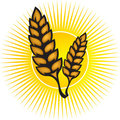 Wheat logo Stock Photography