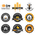Wheat production label set with differently varied modern vintage elements eps no transparencies ideal for prints Stock Photos
