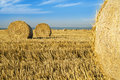 Wheat roll bales at field, sunrise scene. Royalty Free Stock Photo