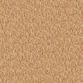 Wheat seamlessly composable texture Royalty Free Stock Photography