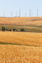 Wheatfields and Windfarms Stock Photography