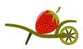 Wheel barrow and strawberry