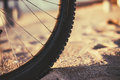 A wheel of a bicycle. Blurred background Royalty Free Stock Photo