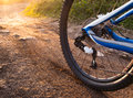 Wheel mountain bike bicycle detail Royalty Free Stock Photo