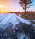 Wheel tracks in mire at winter sunset nime Stock Images
