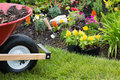 Wheelbarrow alongside a newly planted flowerbed Royalty Free Stock Photo