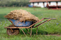 Wheelbarrow with cattle manure natural on the grass barn in background Royalty Free Stock Images